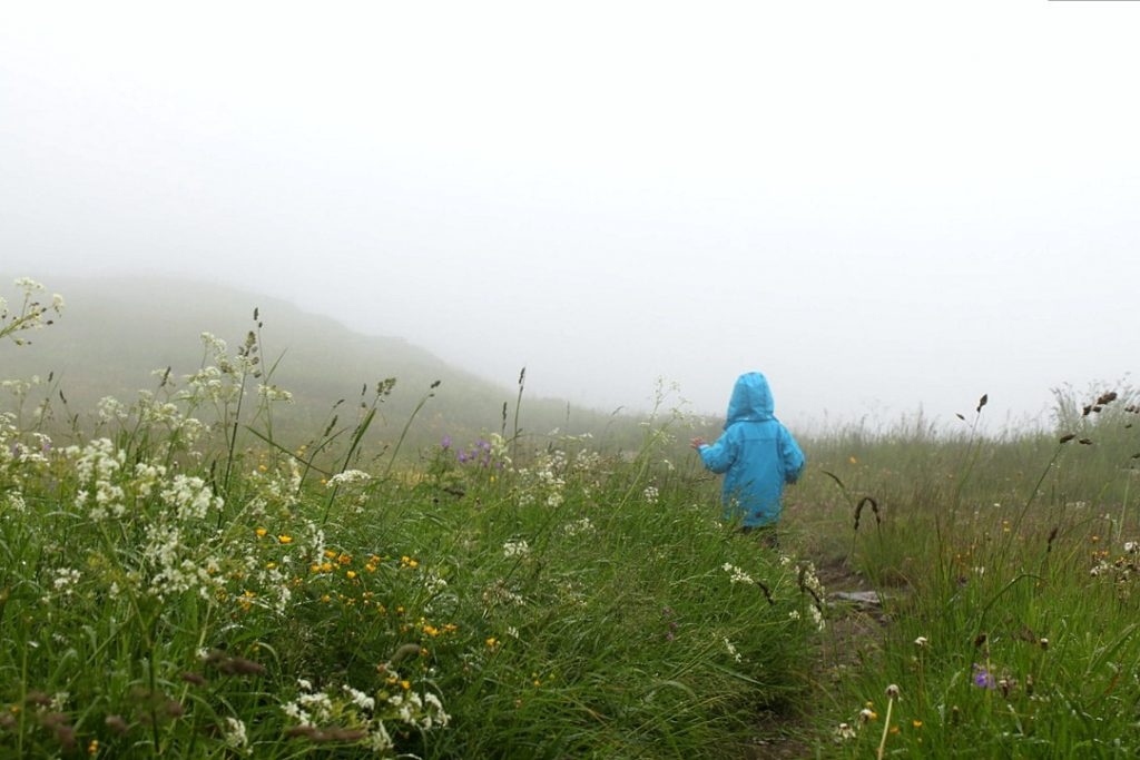Alpit kesällä / Les Menuires