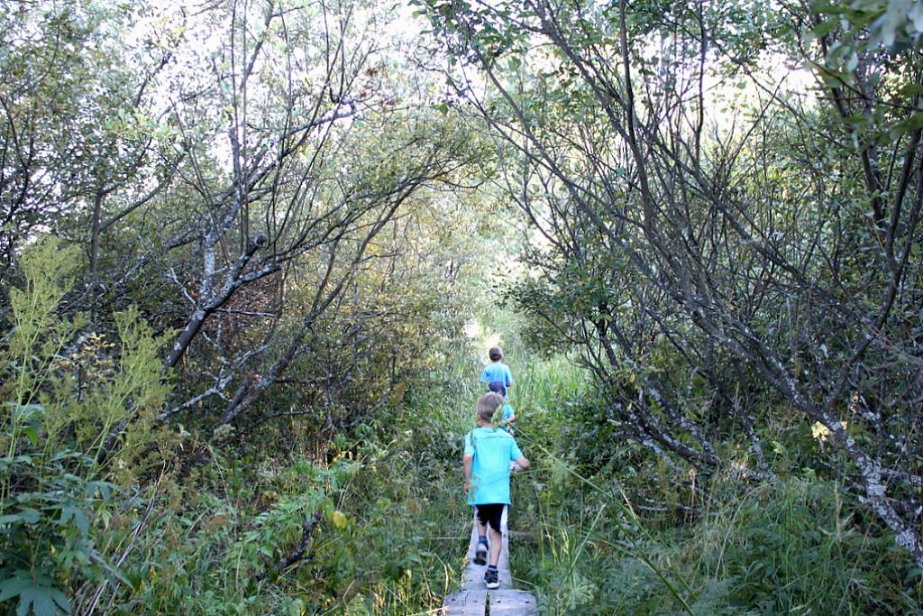 Espoon Laajalahti – upea lähiretkikohde
