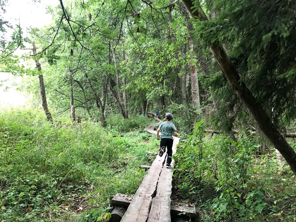 Pieni pala Hanikkaa – pikaretki espoolaiselle luontopolulle