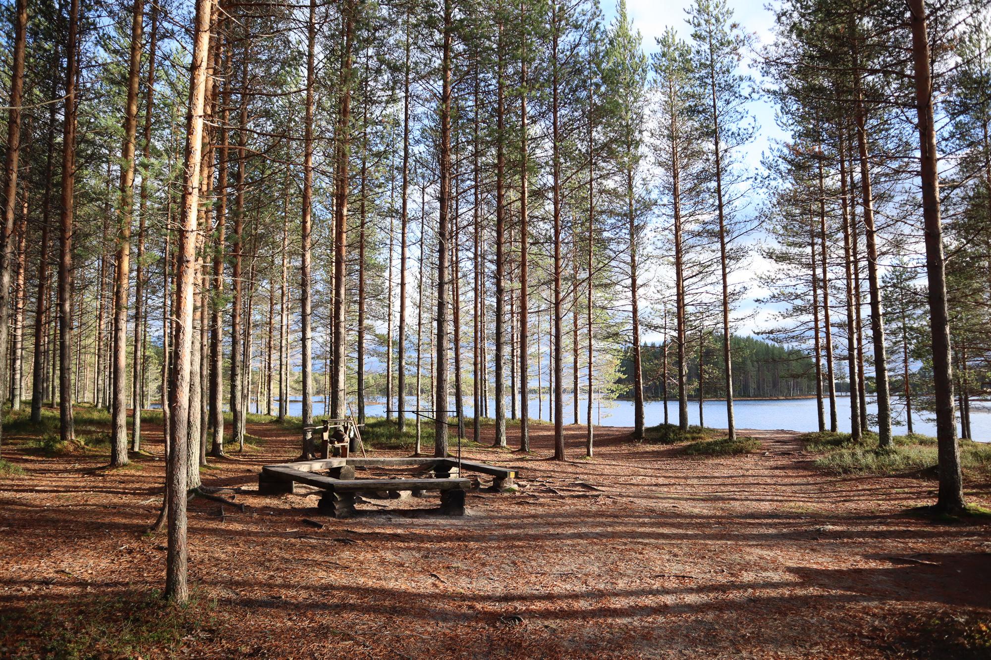 Tiilikkajärven kansallispuisto / Koseva