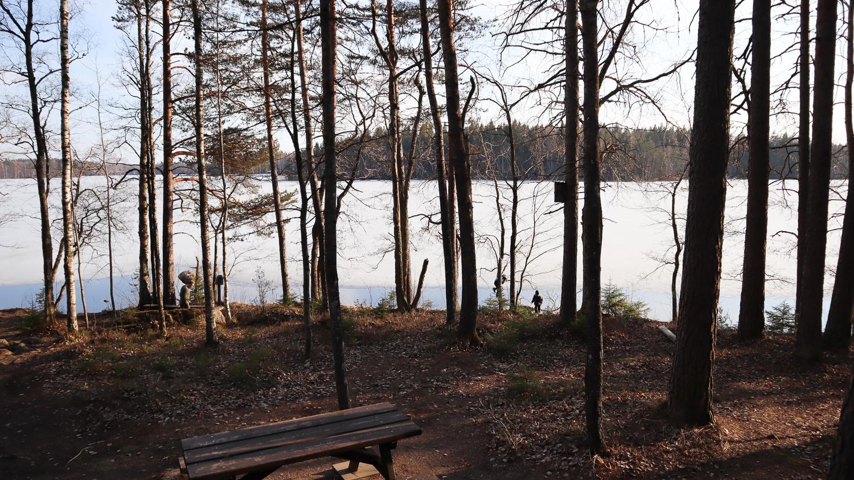 Liesjärven kansallispuisto / Hyypiön kämppä