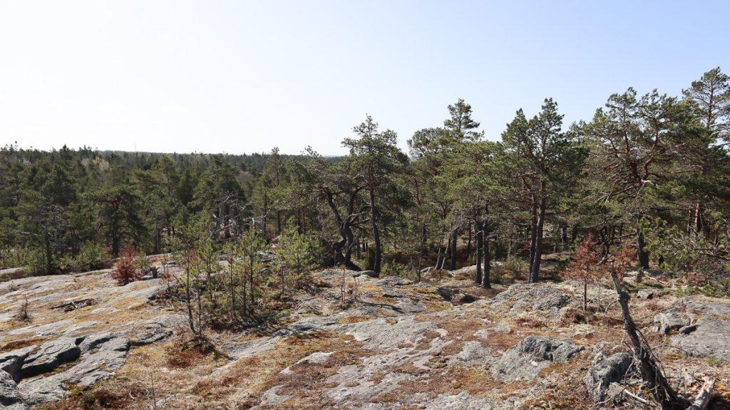 Telebergetin lenkki / Porkkala