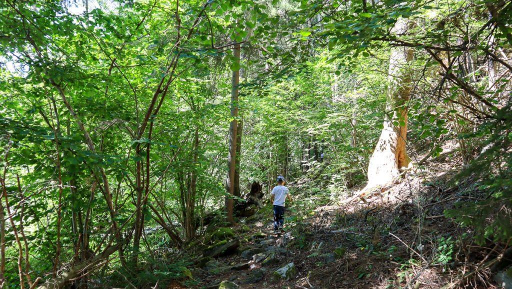 Torholan luolan luontopolku / Karkali