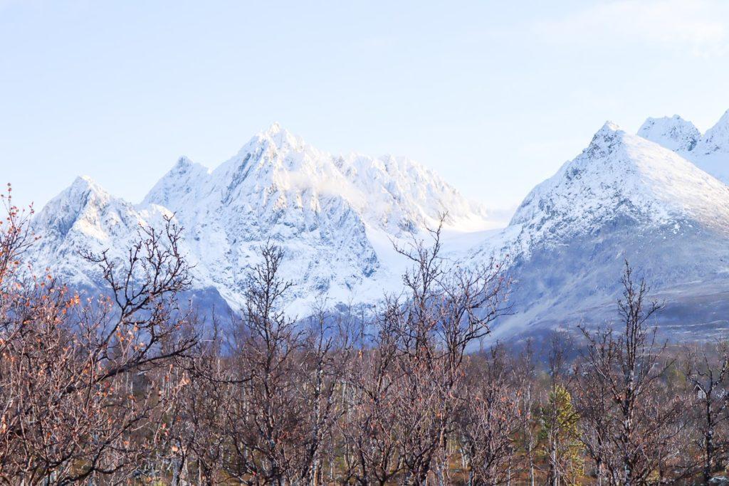 Lyngenin Alpit