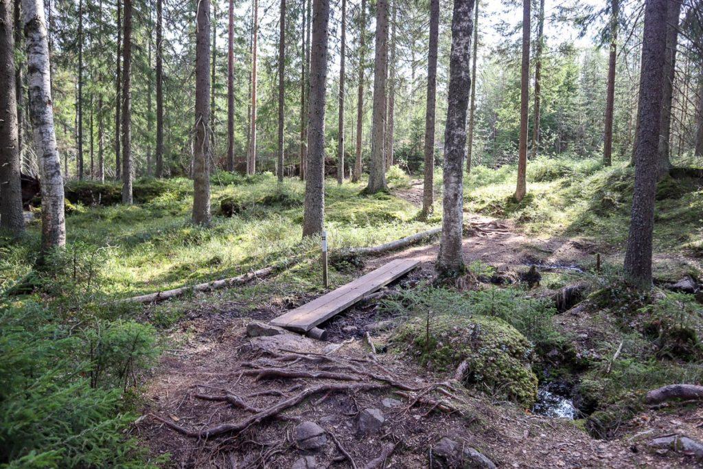 Kaarniaispolku / Nuuksio