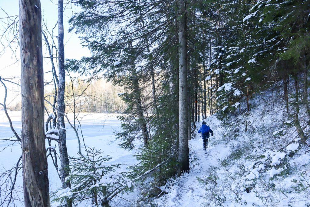 Palojärvi / Palakosken ulkoilualue