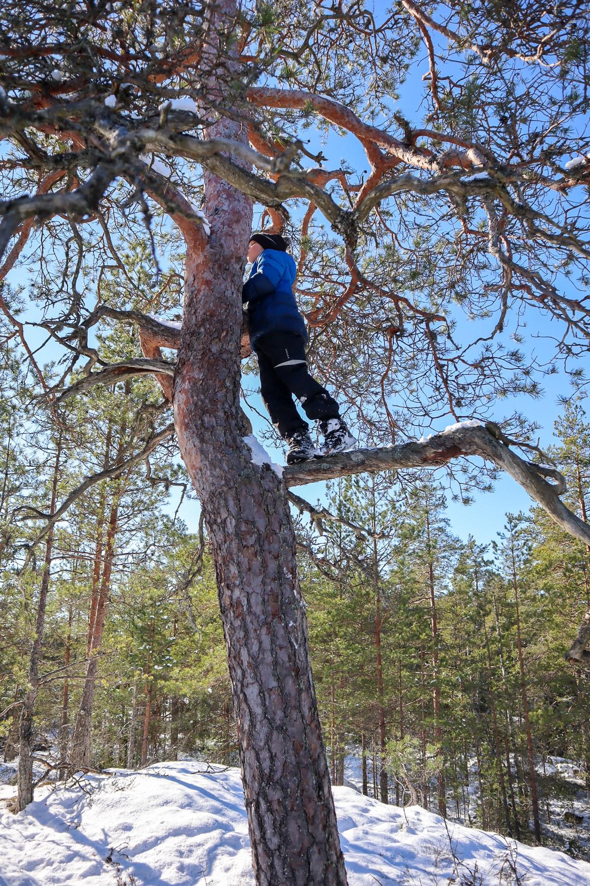 Palakoski / Kiipeilyä puissa