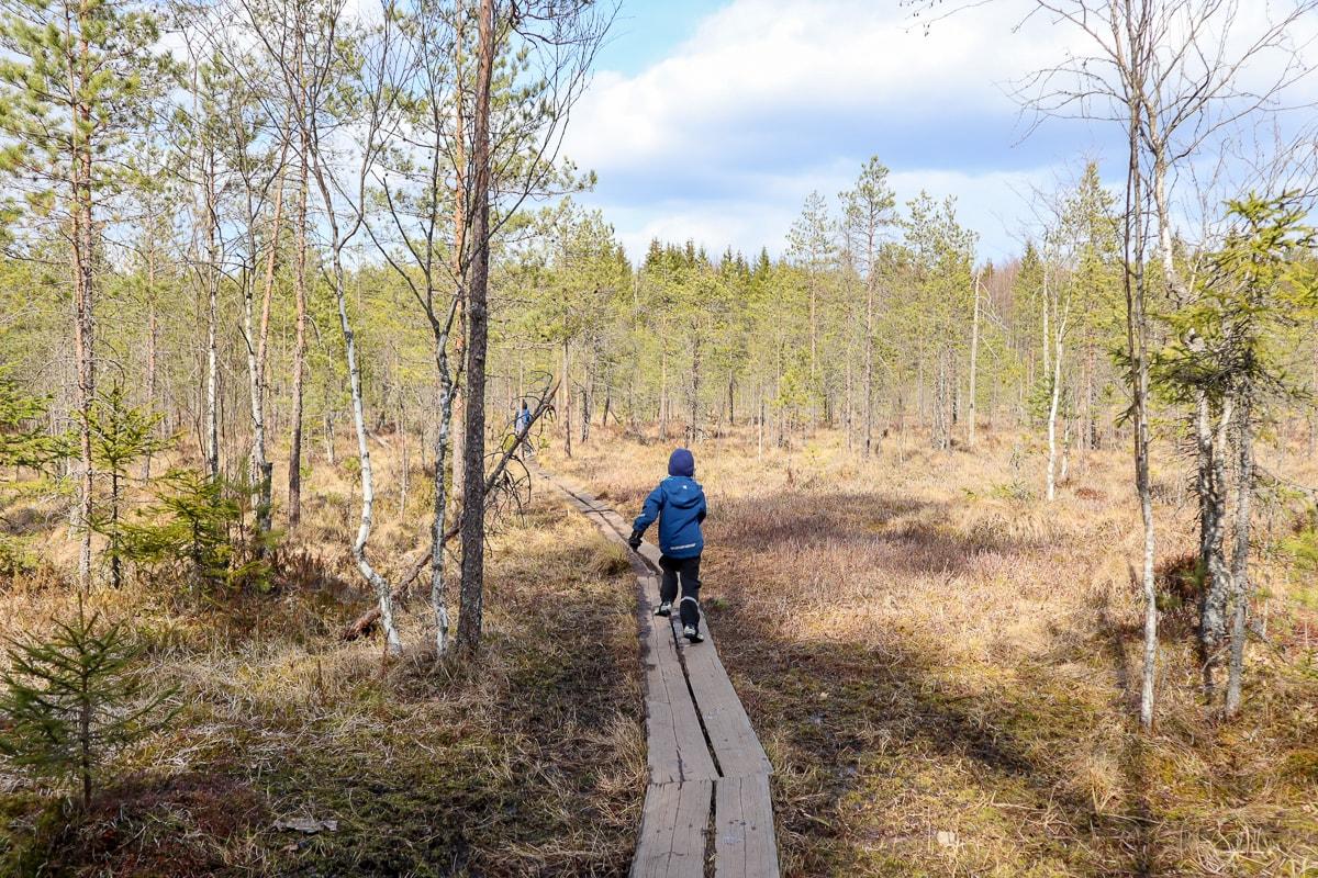 Espoolainen Tremanskärrin luontopolku kuljettaa harvinaiselle keidassuolle