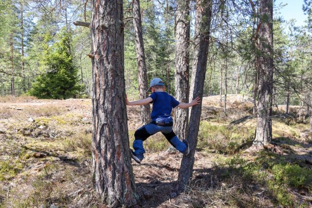 Lasten metsäjumppa