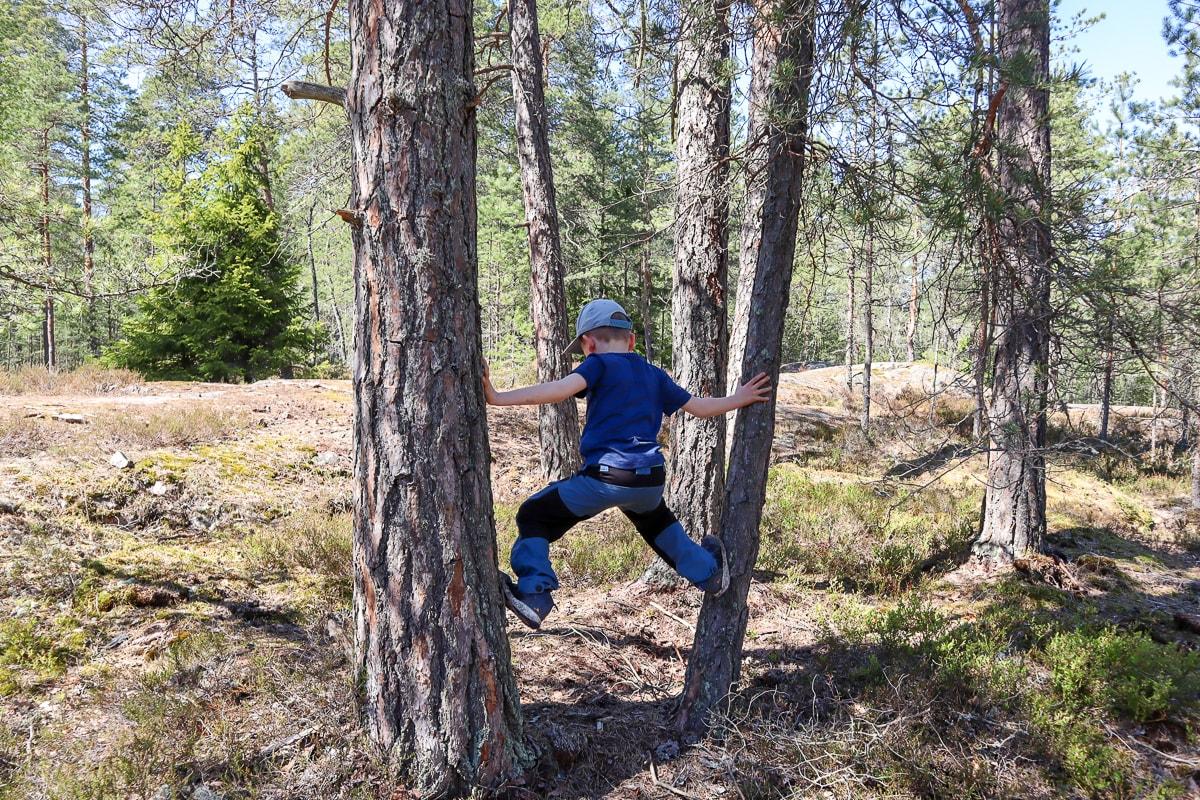 Hauskaa jumppaa Metsätreeni-kirjan innoittamana