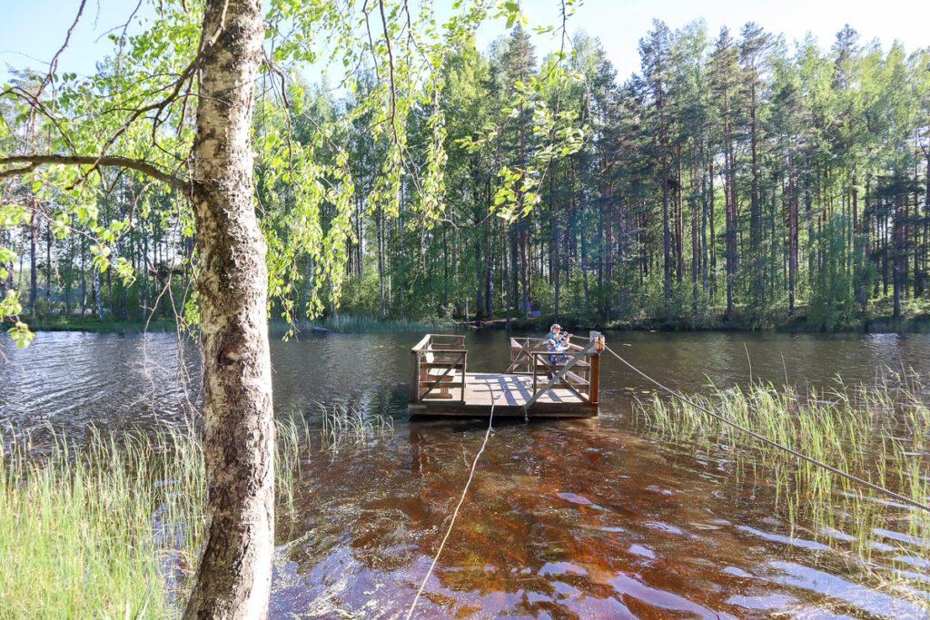 Meidän metsä -luontopolku / Ruostejärvi