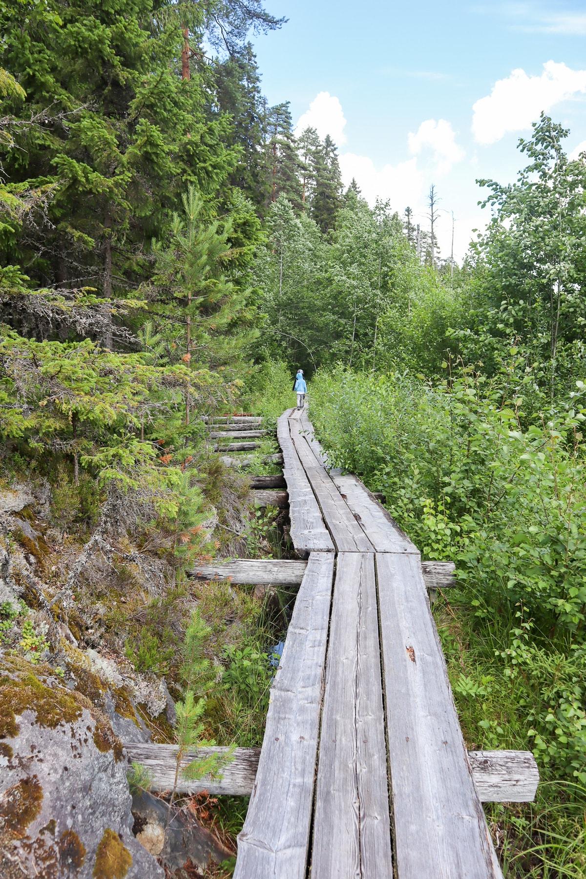 Majavapolku / Isojärven kansallispuisto