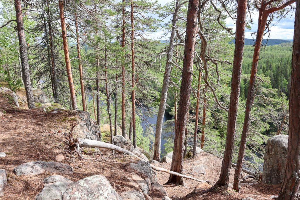 Vuori-Kalaja / Etelä-Konneveden kansallispuisto
