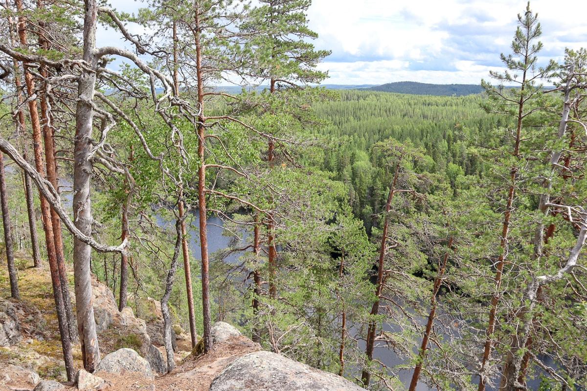 Kalajan kierros Etelä-Konnevedellä – Suomen upein luontopolku?