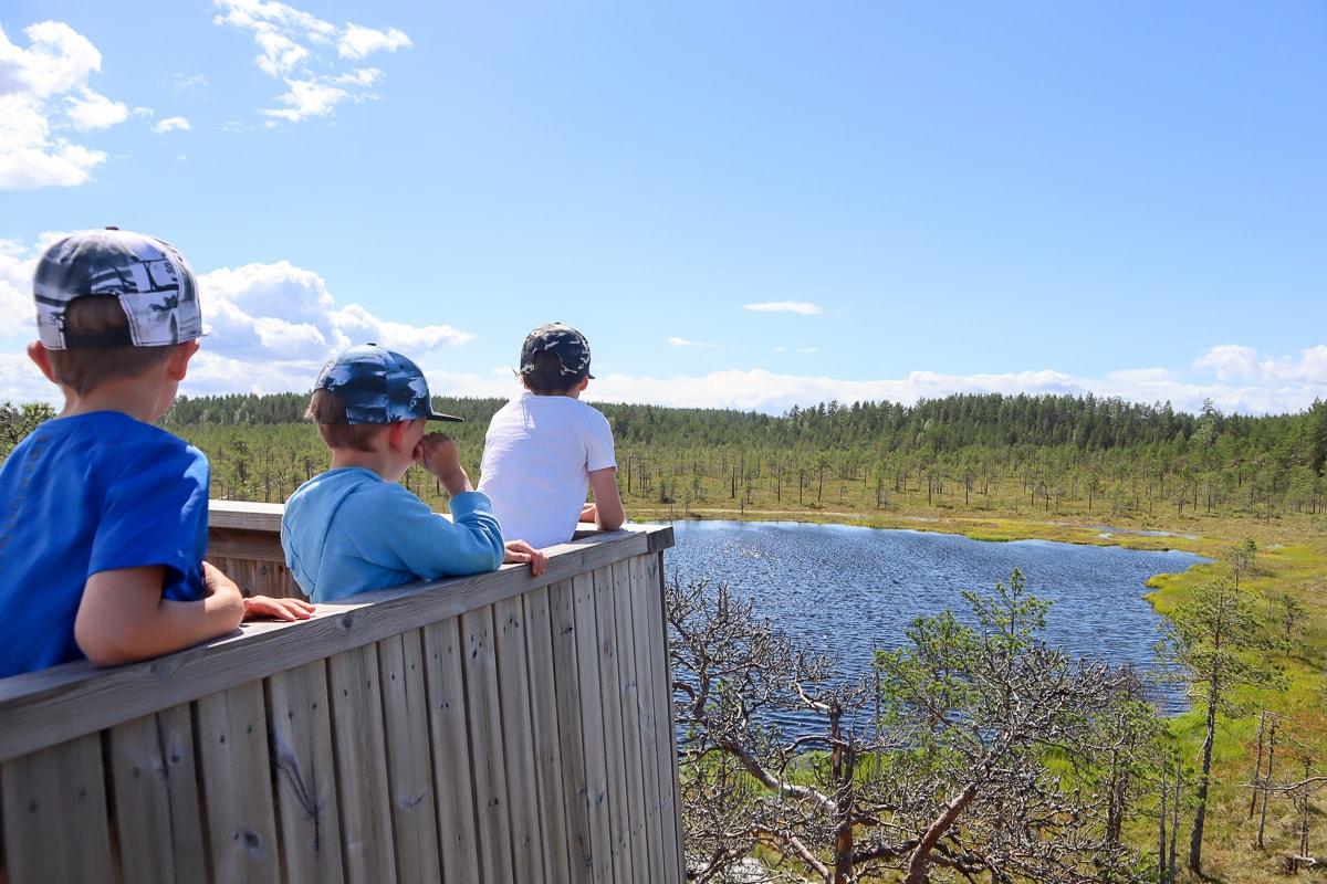 Kirveslammen kierros on hieno piipahdus Leivonmäen kansallispuistoon