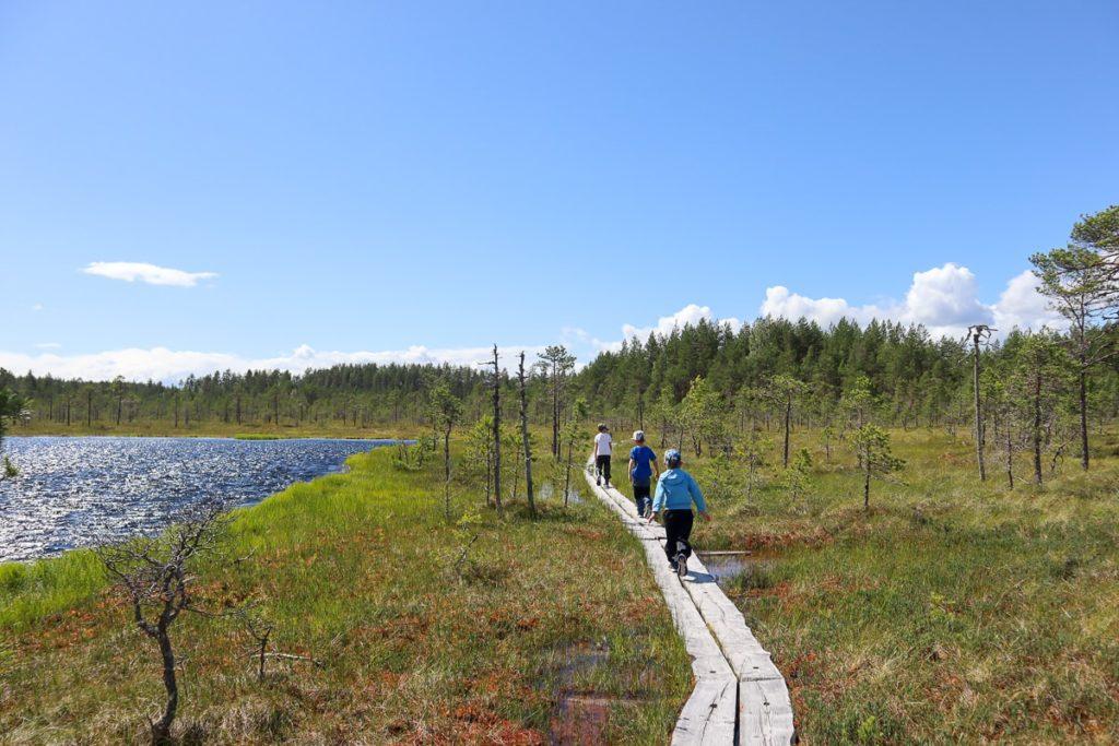 Pitkospuilla / Leivönmäen kansallispuisto