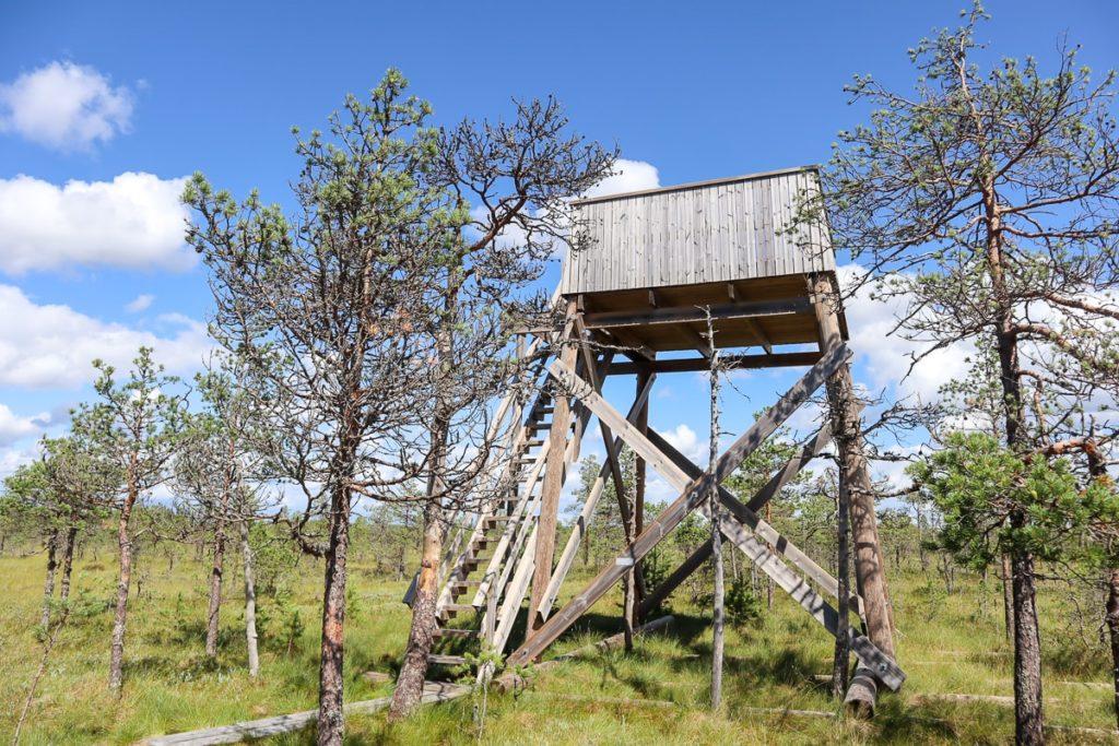 Lintutorni / Leivönmäen kansallispuisto