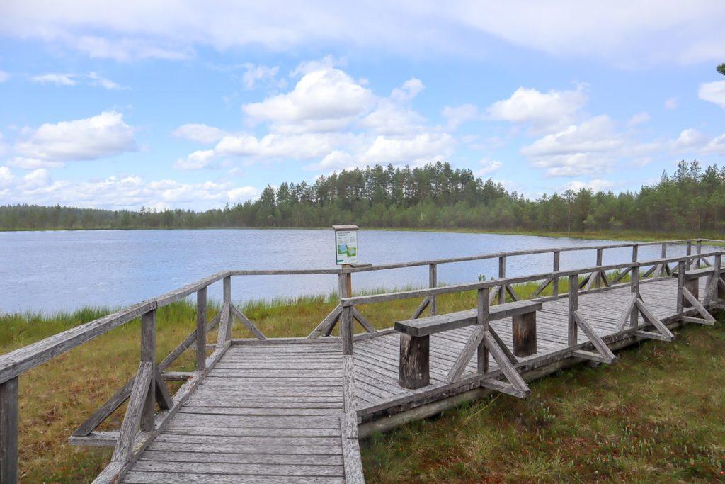 Harjujärven esteetön reitti / Luupään lenkki / Leivonmäen kansallispuisto