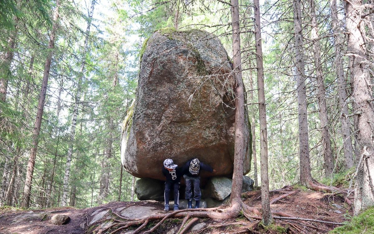 Heretyn luontopolku –  pieni helmi Isojärven kansallispuistossa