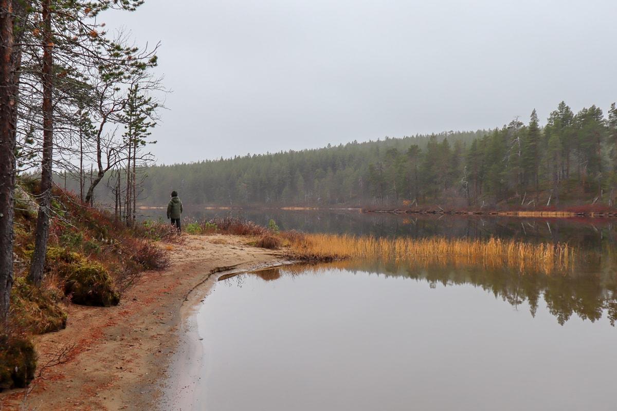 Lemmenjoen kansallispuisto huokuu maagista voimaa
