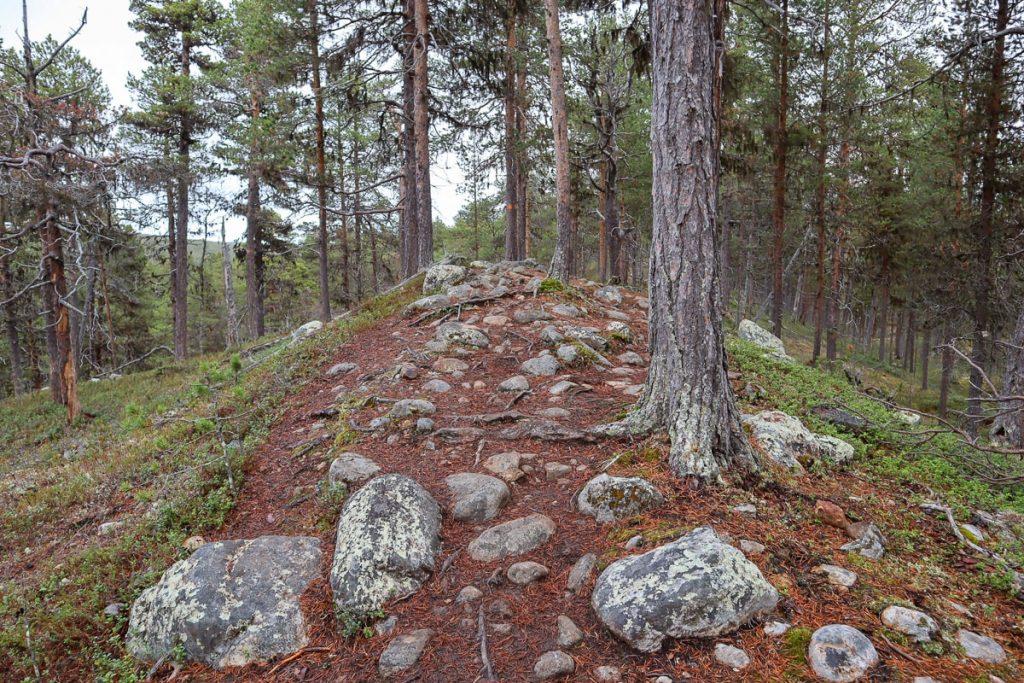 Kiviä polulla