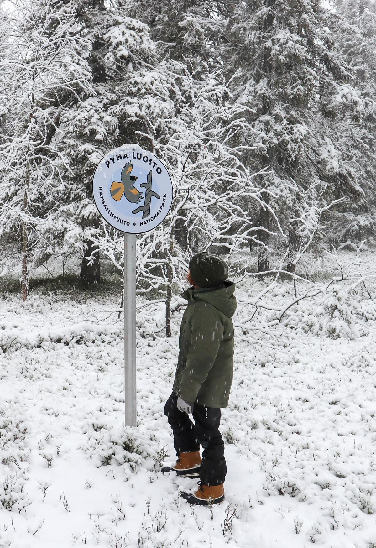 Pyhä-Luoston kansallispuisto / Suuntana Ametistikaivos