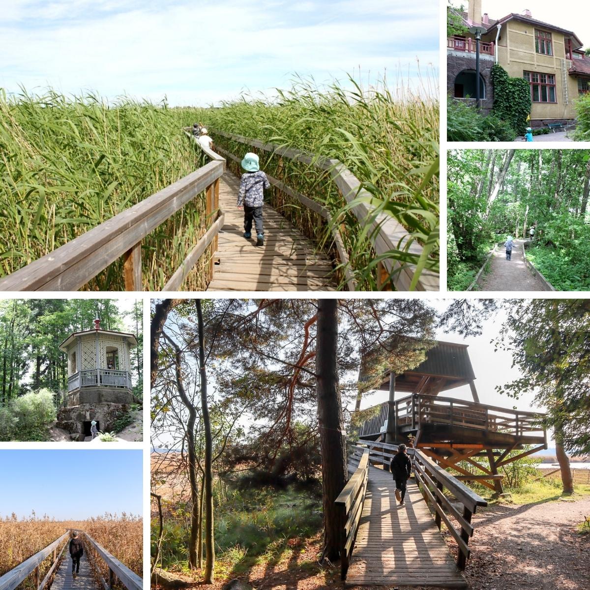 Villa Elfvikin luontopolku