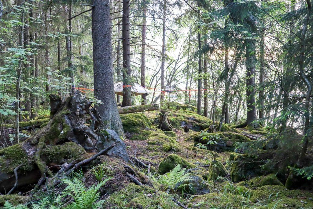 Tentsile Experience Camp Akaa