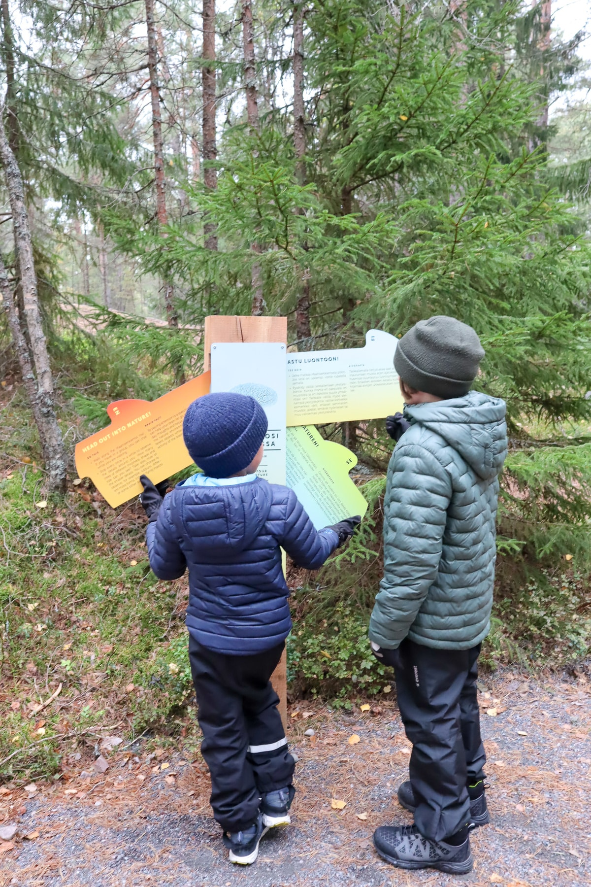Maahisenpolku / Nuuksio / Lataa aivosi luonnossa
